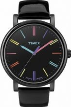 Zegarek Timex T2N790